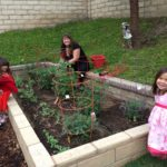 Children Learn and Participate As Mary's Schoolhouse Garden Grows