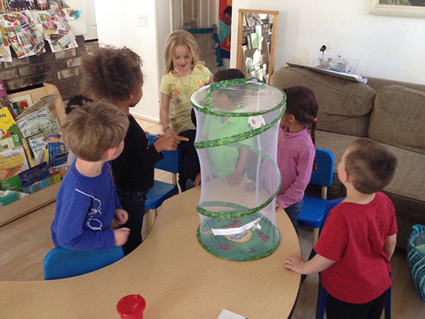 Caterpillars to Butterflies-Mary's Valencia Schoolhouse