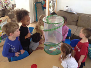 Children Observe New Butterfly