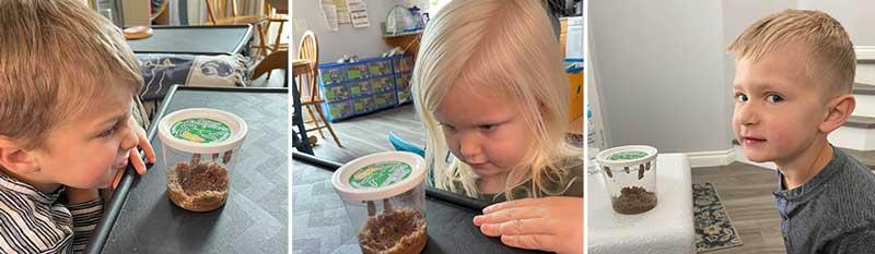 Children Looking at Caterpillars