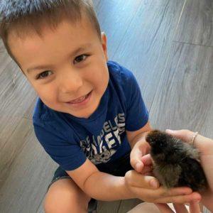 Jacob With Chicks
