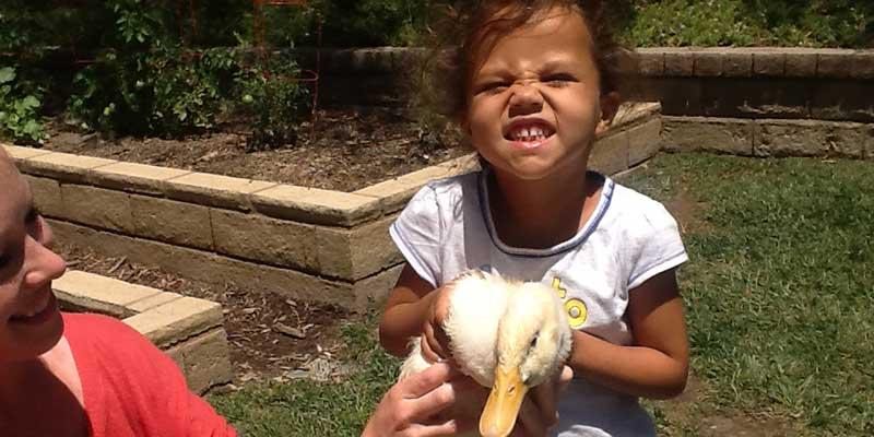 Kid Holding Duckling