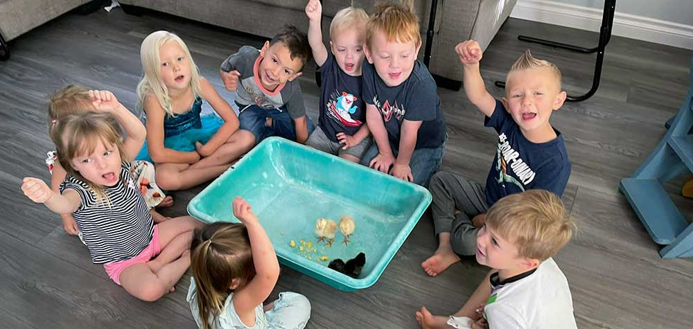 Kids with Baby Chicks