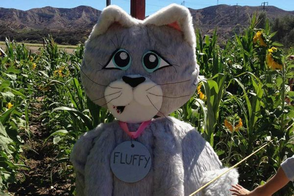 Scarecrow Enty at Lombardies Ranch 013