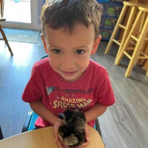 Zack Holding Two Baby Chicks
