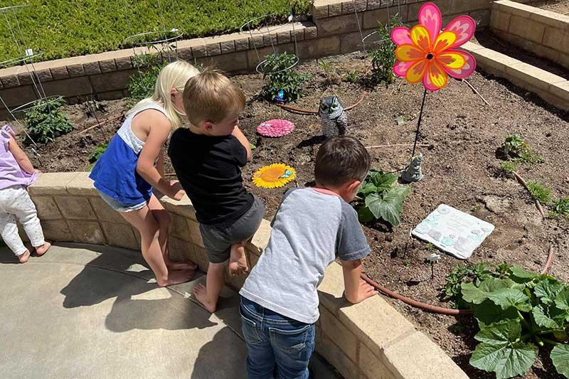 new Garden 2021 at Marys Schoolhouse